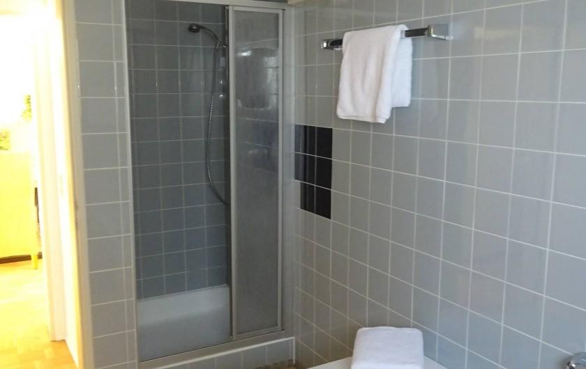 Location de vacances - Appartement à Linz - Salle de bain douche