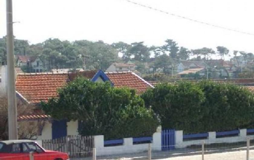 Location de vacances - Maison - Villa à Lacanau - vue de la dune