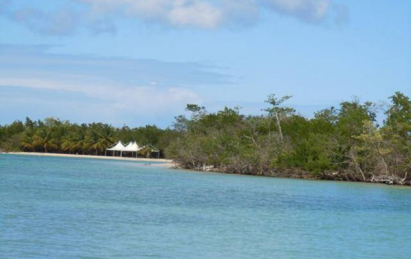 Location de vacances - Villa à Morne-À-l'Eau - La plage de la pointe de sable
