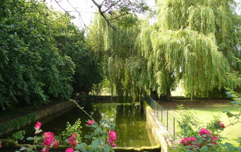 Location de vacances - Chambre d'hôtes à Cubnezais - Jardin