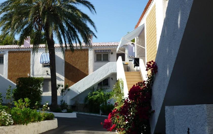 Location de vacances - Appartement à Alicante - La maison est derrière le palmier, au premier étage.