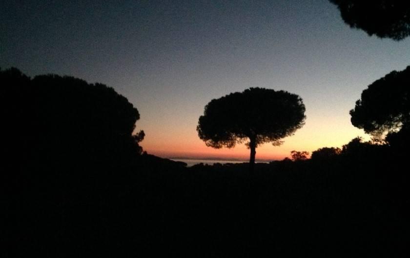 Location de vacances - Mas à La Croix-Valmer - Vue de la terrasse Le soir