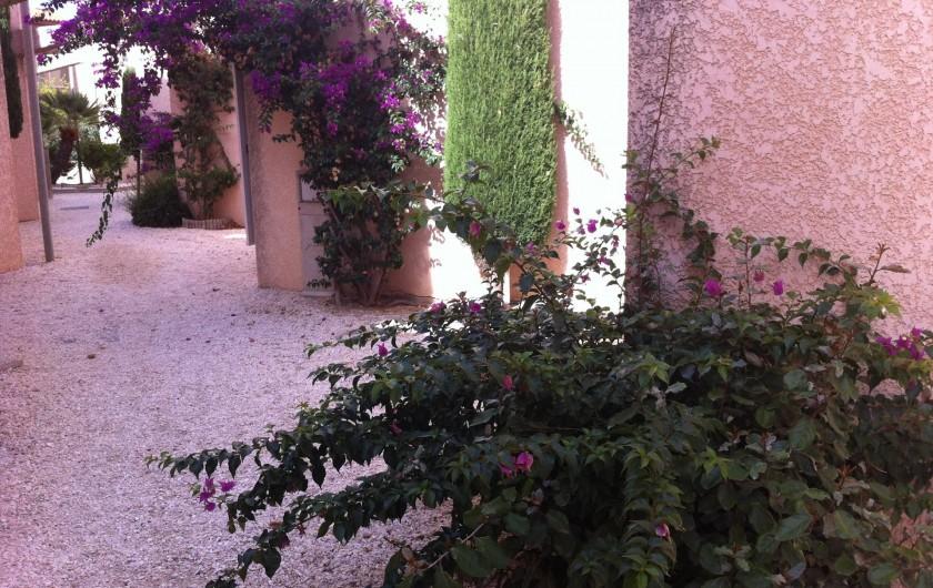 Location de vacances - Villa à Le Barcarès - Allée de la villa