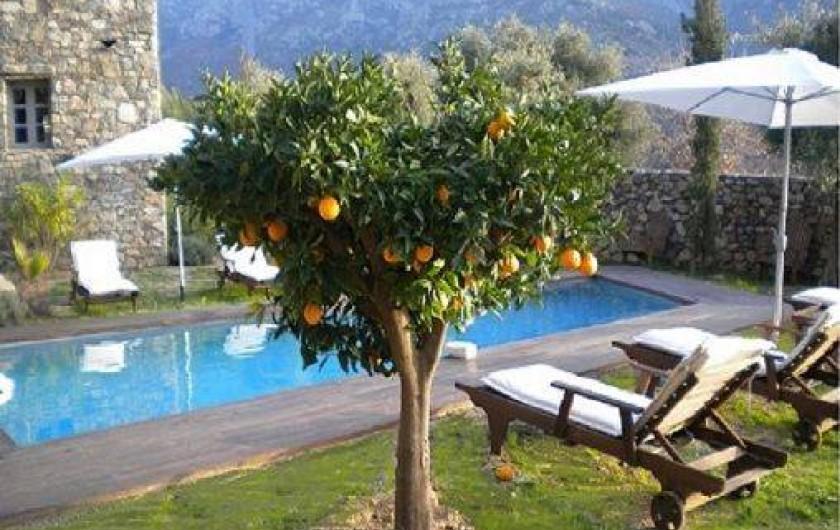 Location de vacances - Maison - Villa à Calvi - Oranger