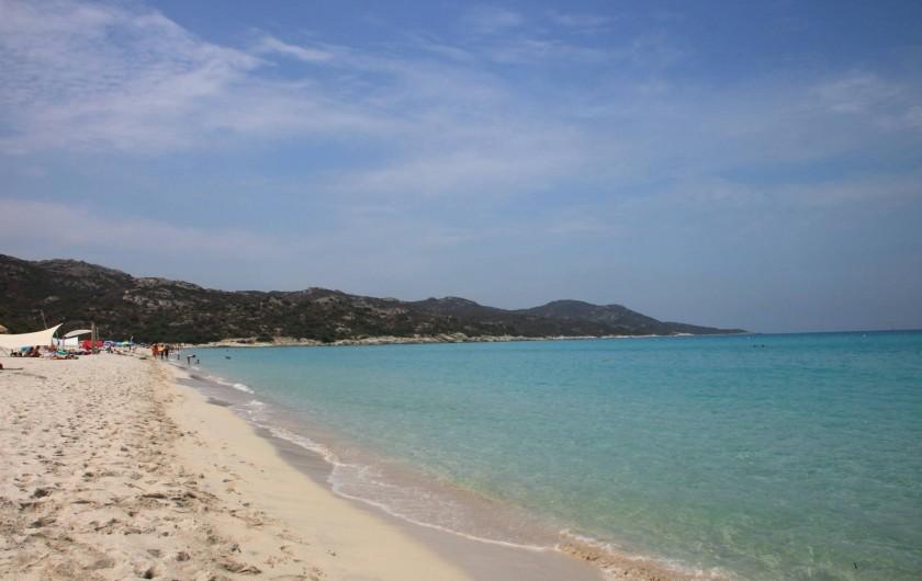 Location de vacances - Appartement à Saint-Florent - Plage de Saleccia accessible en bateau,4x4,ou randonnée pédestre.