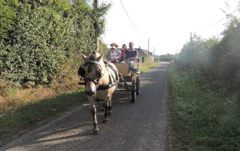 Location de vacances - Chambre d'hôtes à Hirel - promenade en caleche avec mia