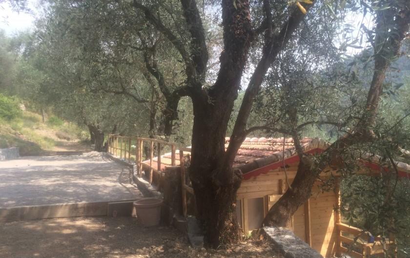 Location de vacances - Villa à Breil-sur-Roya - chalet