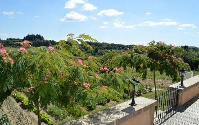 Location de vacances - Maison - Villa à Saint-Vaury