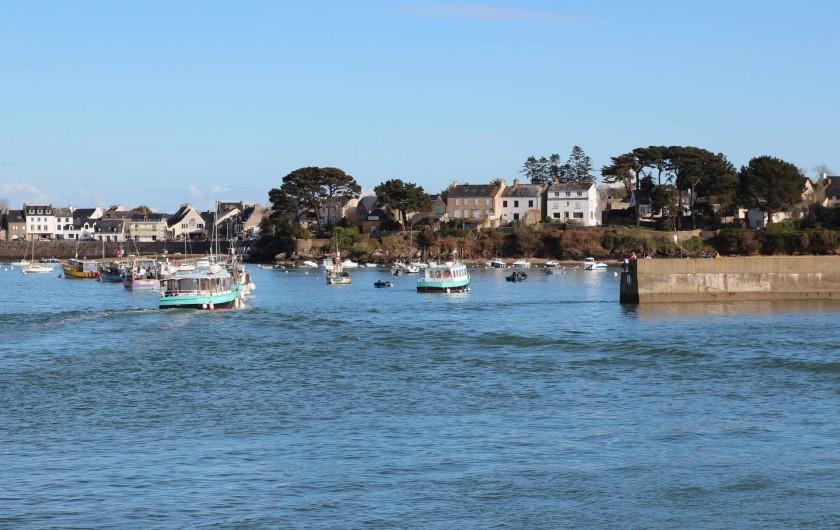 Location de vacances - Camping à Sarzeau - Port Navalo - Bretagne Sud