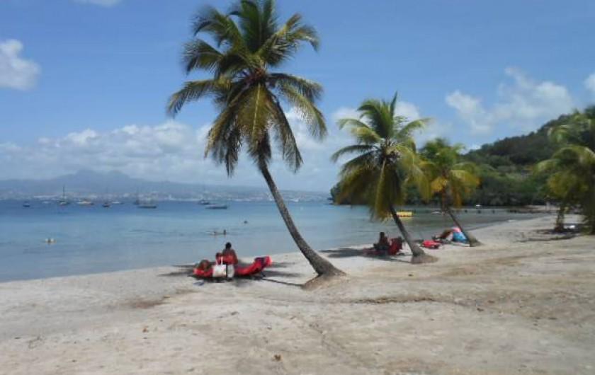 Location de vacances - Appartement à Les Trois-Îlets - Plage de l'Anse à l'Âne