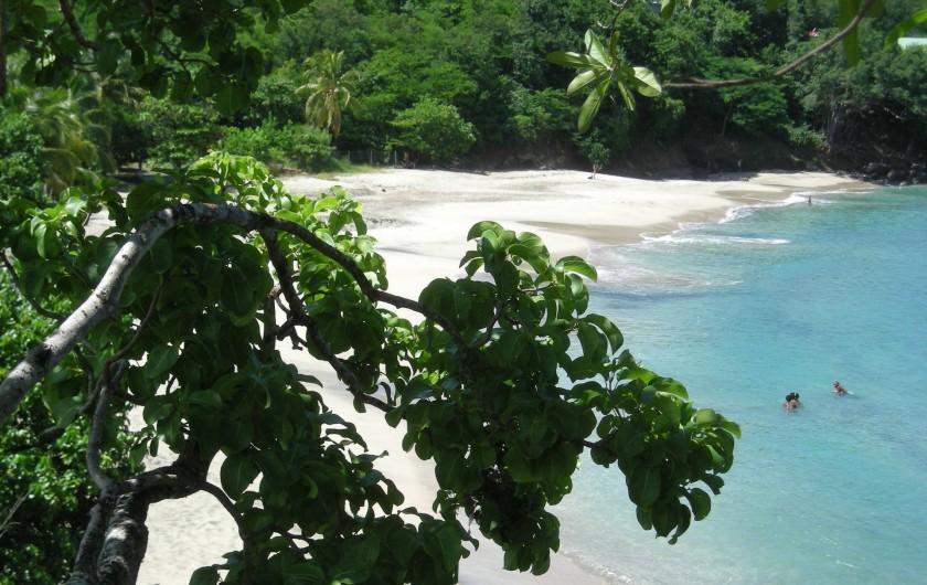 Location de vacances - Bungalow - Mobilhome à Deshaies - Plage de Leroux à 250m des  gites