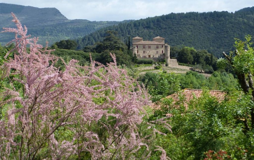 Location de vacances - Villa à Le Bousquet-d'Orb