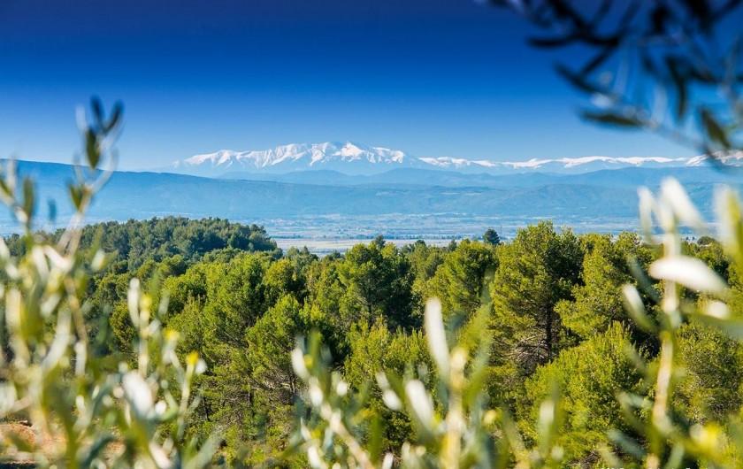 Location de vacances - Gîte à La Livinière - Vue du chemin devant le gîte