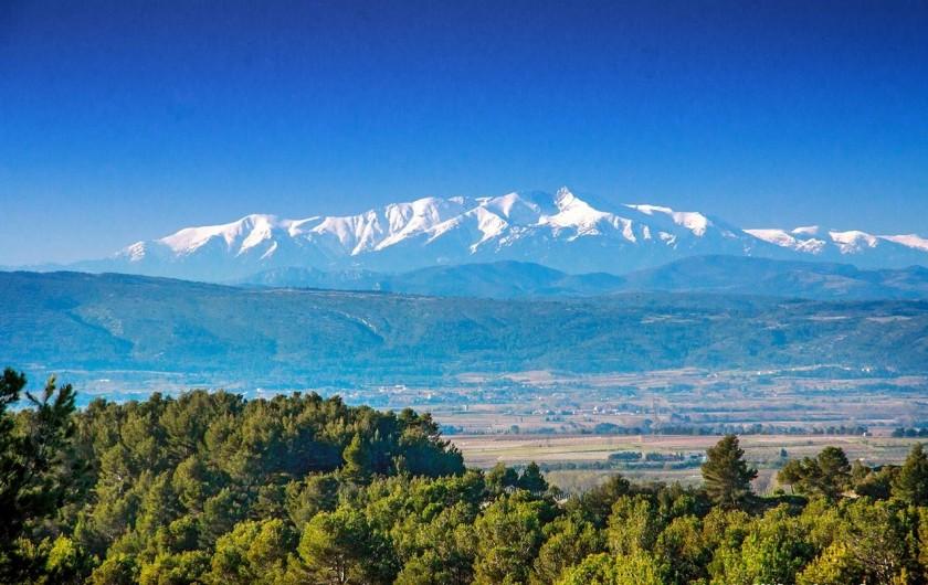 Location de vacances - Gîte à La Livinière - Vue sur les Pyrénées enneigé en janvier - février - mars