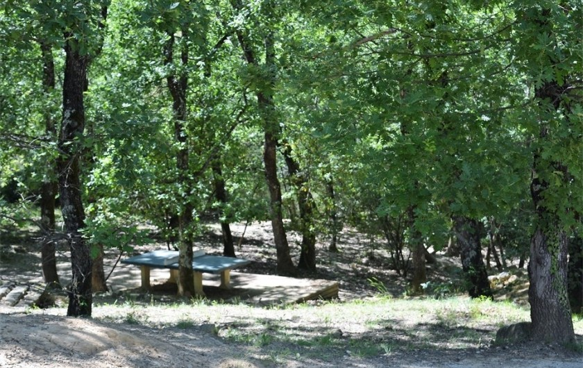 Location de vacances - Maison - Villa à Salavas - table de ping-pong