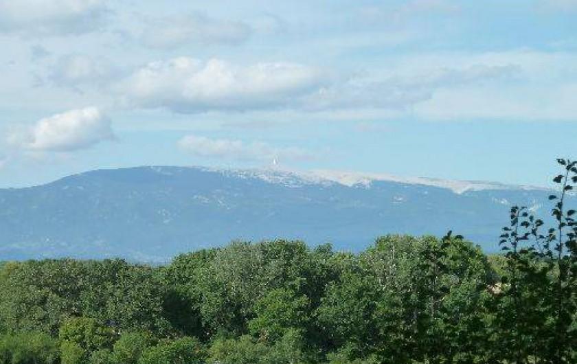 Location de vacances - Villa à Pernes-les-Fontaines - VUE MONT VENTOUX