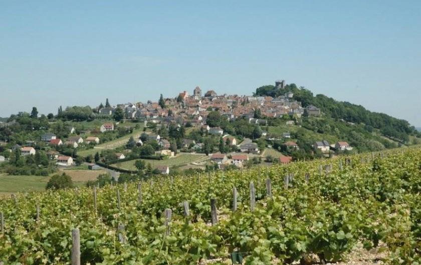 Location de vacances - Gîte à Neuvy-sur-Loire - Venez découvrir la région du Sancerrois et ces bons vins!