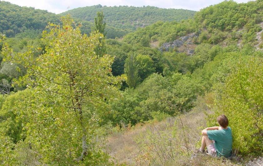 Location de vacances - Maison - Villa à Payrac - Des magnifiques balade sur les sentier de Compostelle