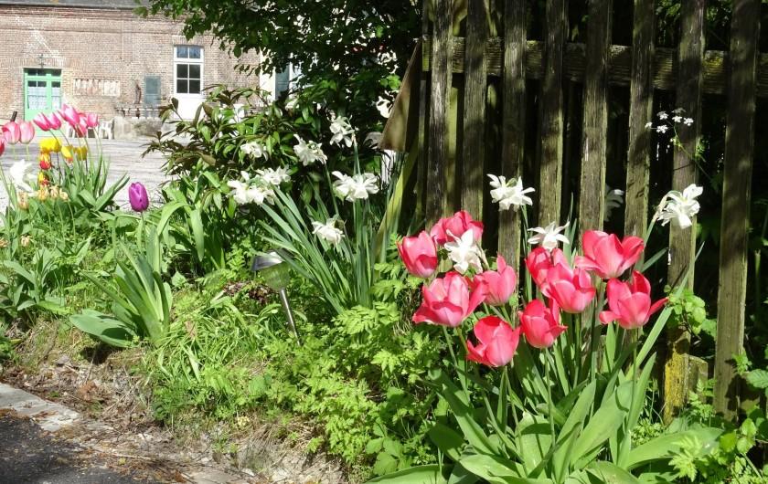 Location de vacances - Gîte à Ponthoile - les fleurs