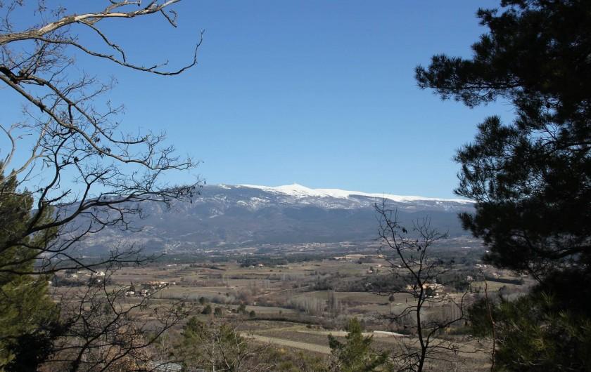 Location de vacances - Villa à Mazan - Balades au départ de la maison avec vue sur Mont Ventoux
