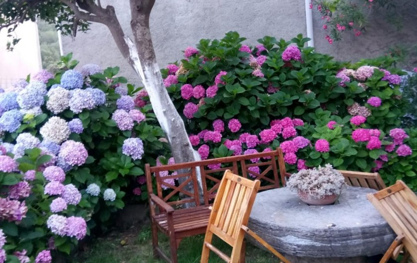 Location de vacances - Maison - Villa à Taglio-Isolaccio