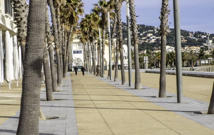 Location de vacances - Appartement à Sète - Promenade aux palmiers