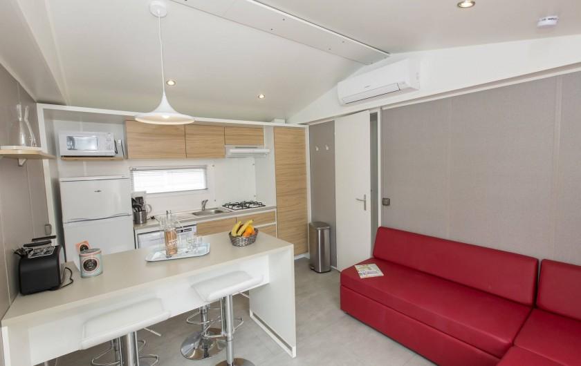 Location de vacances - Bungalow - Mobilhome à Vendres - Séjour du Mobile Home Alicante