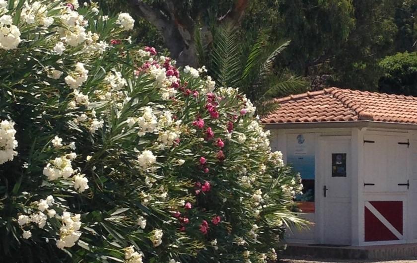 Location de vacances - Bungalow - Mobilhome à Monforte San Giorgio