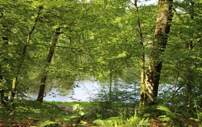 Location de vacances - Gîte à Sept-Frères - l'étang du Vieux Chateau à la forêt de St Sever Calvados