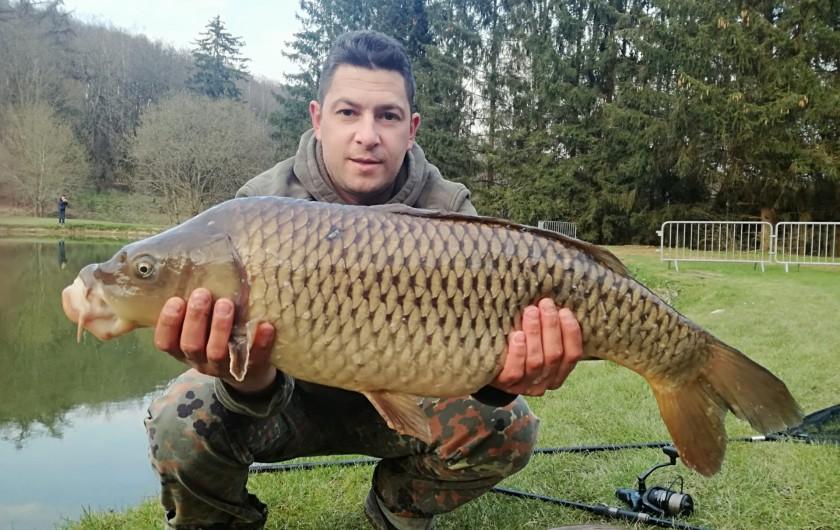 Location de vacances - Gîte à Haut-Fays - Portique en bois