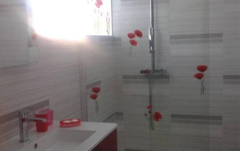 Location de vacances - Villa à Allègre-les-Fumades - Salle de bain  décorations coquelicots et tulipes