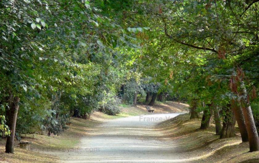 Location de vacances - Chalet à Pompiey - chemins