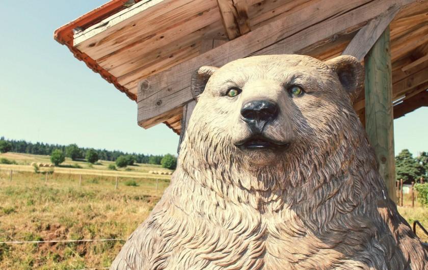 Location de vacances - Gîte à Coucouron - Le Grizzly vous accueille !