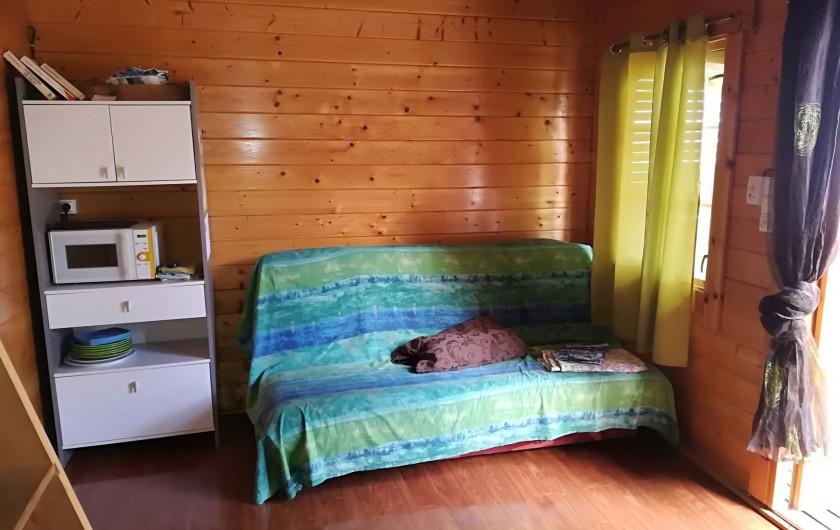 Location de vacances - Chalet à La Saline-Les-Bains - pièce à vivre aménager d'un canapé lit et des roman sont à disposition.