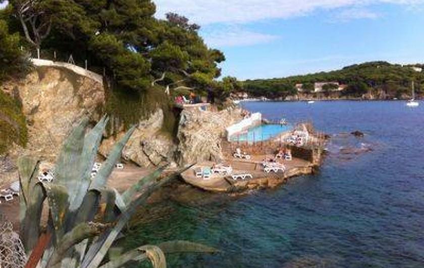 Location de vacances - Villa à Hyères - Piscine d'été - Port du Niel