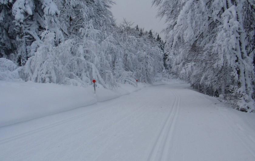 Location de vacances - Gîte à Orbey - En hiver la route de crêtes en hiver est une piste de ski de fond