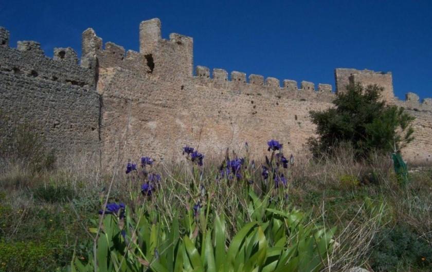 Location de vacances - Gîte à Montpeyroux - mur d'enceinte du château fort