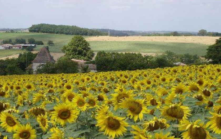 Location de vacances - Gîte à Sainte-Souline