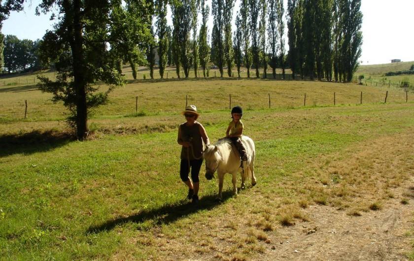 Location de vacances - Gîte à Saint-Agne - Centre équestre et poneyx à la Métaierie du Roc à Faux 5 kms