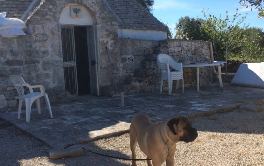 Location de vacances - Mas à Ceglie Messapica - Trullo Salice Maison de vacances en Pouille
