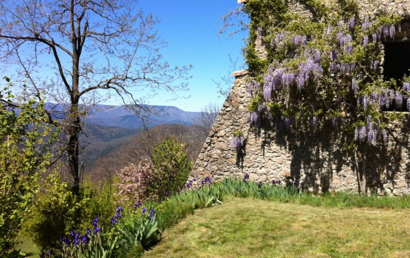 Location de vacances - Mas à Saint-Roman-de-Codières - Côté jardin au printemps