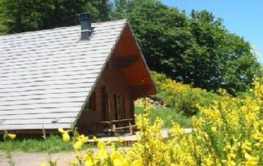 Location de vacances - Chalet à Chambon-sur-Lac