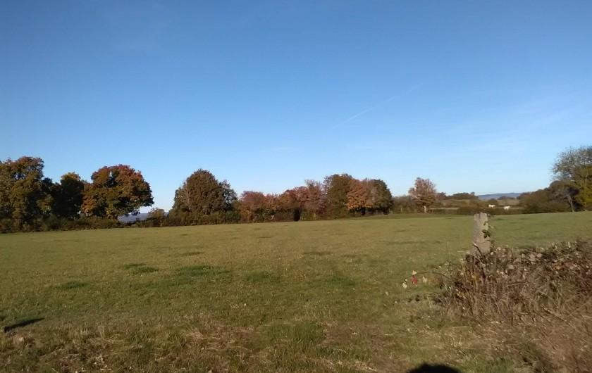 Location de vacances - Gîte à Bromont Lamothe - Aux alentours ; paysage de bocage