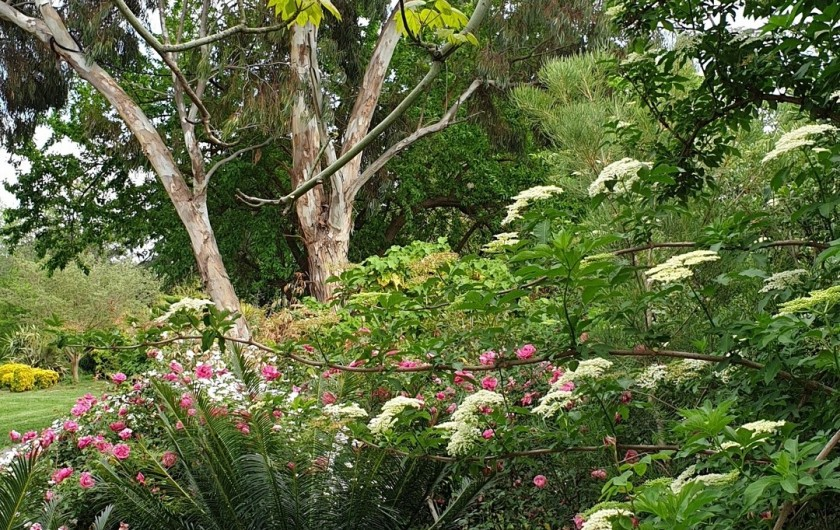 Location de vacances - Studio à Hyères - Le Jardin Olbius Riquier, un paradis pour les enfants