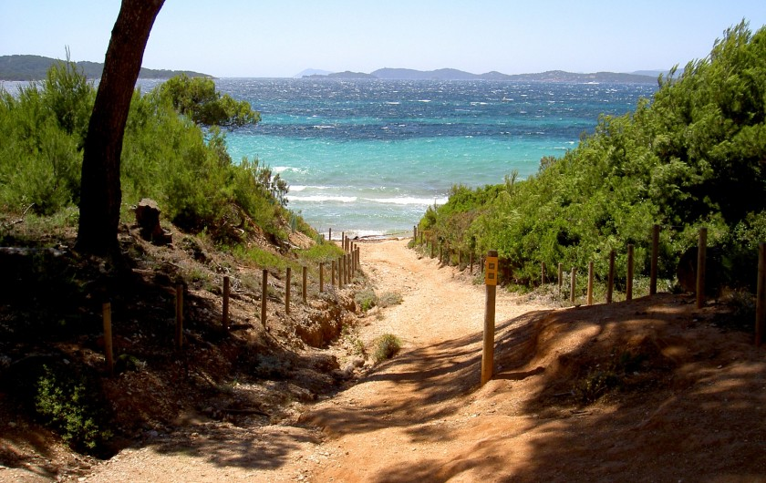 Location de vacances - Studio à Hyères - Ile de Porquerolles, promenades à pieds ou en vélo Copyright Hyères-Tourisme