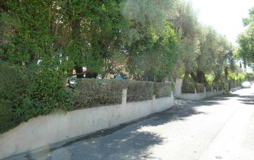 Location de vacances - Villa à Antibes - Le jardin vu depuis la rue