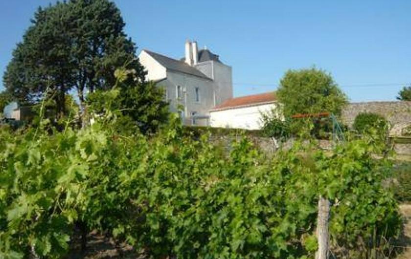 Location de vacances - Gîte à Montjean-sur-Loire
