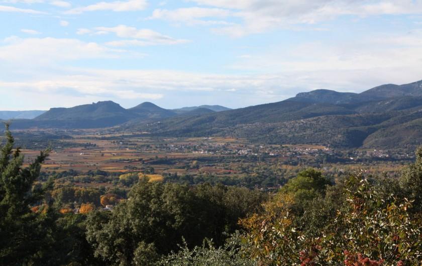 Location de vacances - Roulotte à Aniane - vue sur le vignoble