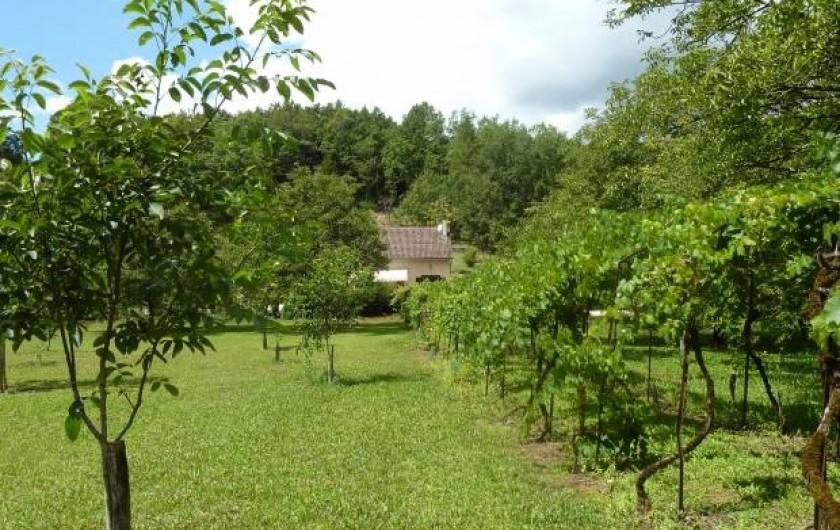 Location de vacances - Gîte à Terrasson-Lavilledieu - NOYERAIE DEVANT GITE