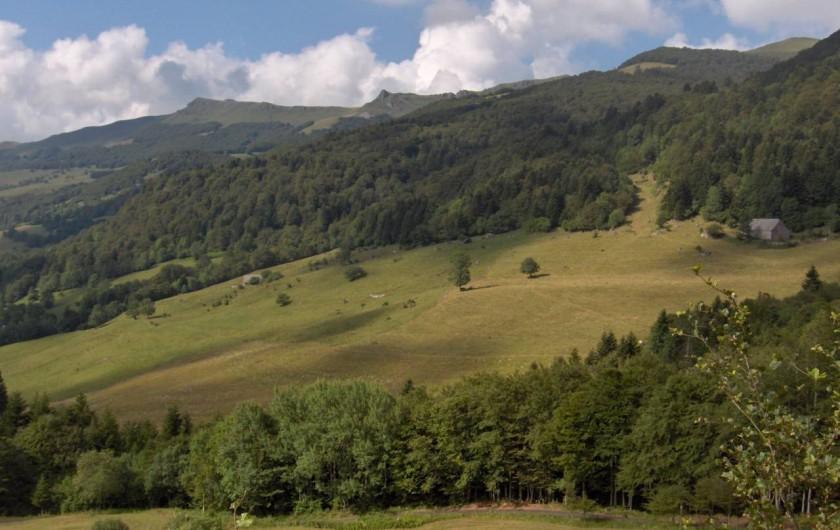 Location de vacances - Gîte à Le Falgoux - La vallée avoisinante